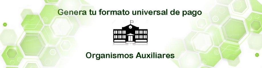 ORGANISMOS AUXILIARES_01